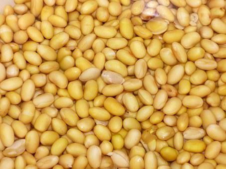 Soy, Beans, Yellow, Vegetables, Background