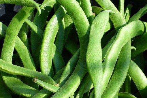 Runner Beans, Vegetable, Beans, Food, Healthy, Legume