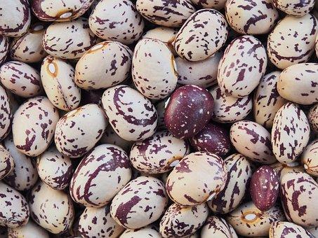 Borlotti, Beans, Dried, Pulses, Preserved, Legume