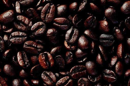 Hara, Coffee, Bean, Roasting, Drip Coffee, Espresso