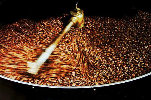 Coffee Beans, Coffee, Costa Rica, Harvest, Drink