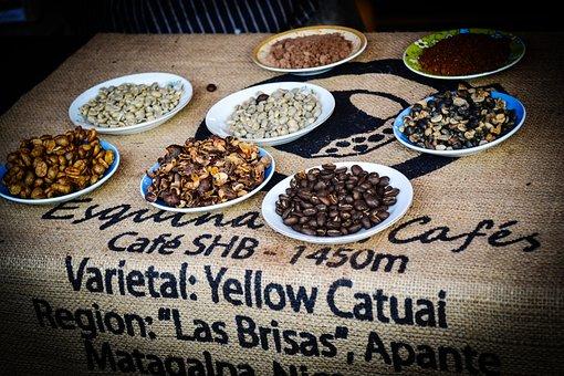 Coffee Beans, Fair Coffee, Culture, Nicaragua