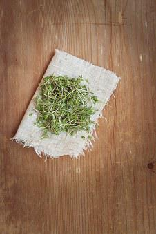 Cress, Plant, Green, Natural Product, Germ Leaves
