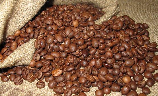 Coffee, Grain, Arabica, Coffee Beans