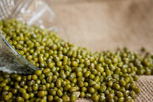 Mung Beans, Vigna Radiata, Moong Bean, Green Gram