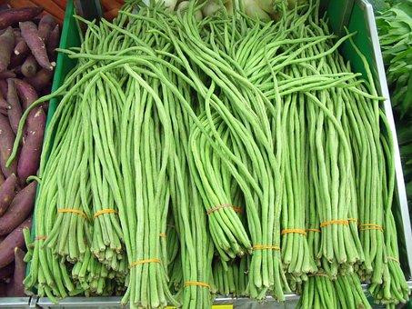 Yardlong Beans, String Beans, Long Beans, Snake Bean