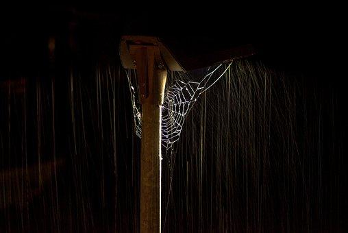 Spider Web, Web, Rain, Night, Raining, Lightning