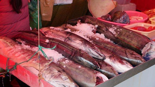 Fish, Salmon, Seafood, Market, British Columbia