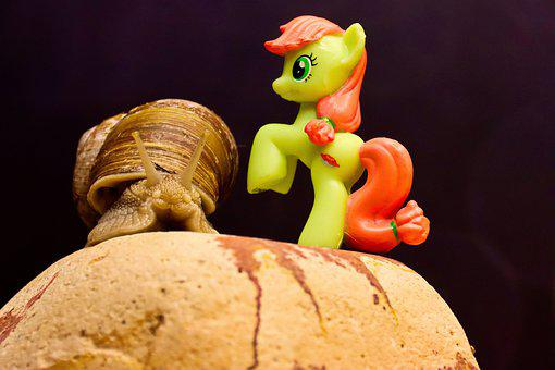 Snail, Toy, My Little Pony, Animal, Mollusk, Gastropod