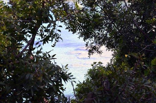 Calpe, Spain, Plants, Landscapes, Natural, Sea, Costa