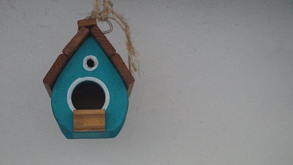 Bird House, Backyard, Garden, Nest Box, Hanging