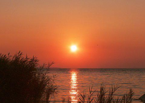 Sunrise, Reed, Lake, Sun, Sunlight, Horizon, Sky, Dawn