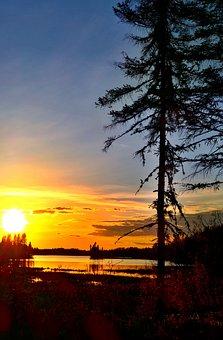 Sunset, Sunlight, Lake, Silhouette, Sunrise, Twilight