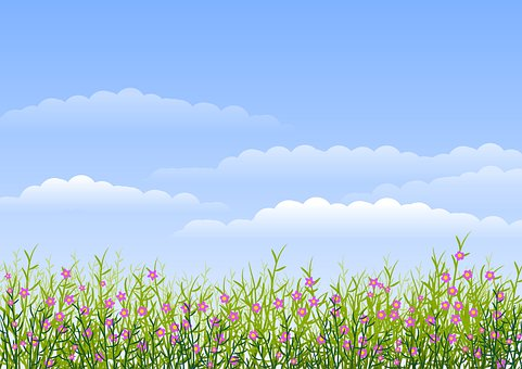 Background, Flowers, Sky, Clouds, Blue Sky, Spring