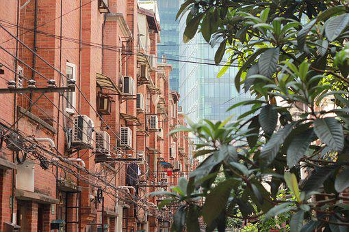 City, Buildings, Apartments, Leaves, Foliage, Tree