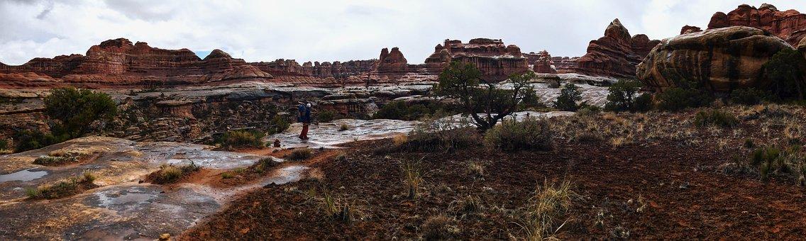 Canyonlands, River, Hiking, Needles District, Trekking