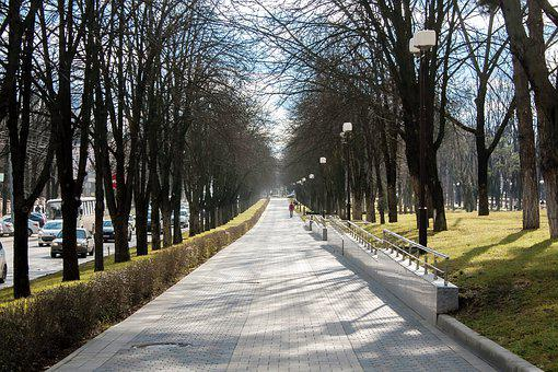 Russia, Kuban, Krasnodar, Winter, Alley, Boulevard
