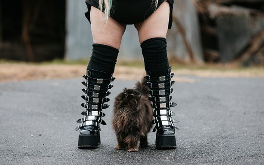 Girl, Cat, Emo, Punk, Alternative, Style, Fashion