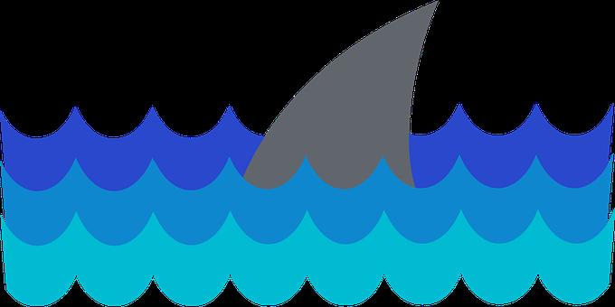 Shark, Fin, Sea, Underwater, Shark's Fin, Ocean
