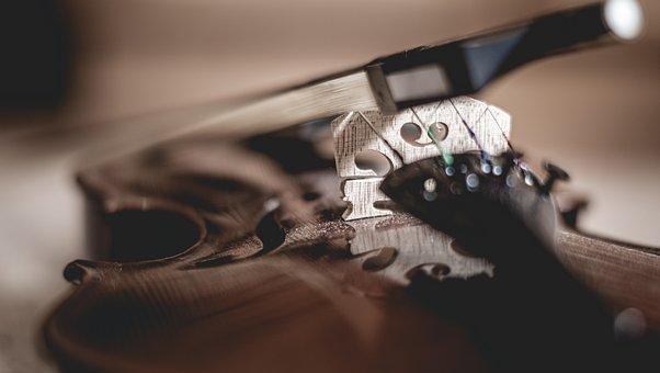 Violin, Music, Musical Instrument, Instrument