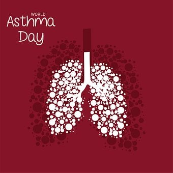 Lungs, Organs, Disease, Treatment, Respiratory, Asthma