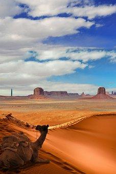 Camel, Desert, Sahara, Sand, Morocco, Buttes