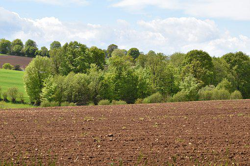Agricultural Land, Agriculture, Cultivated Land