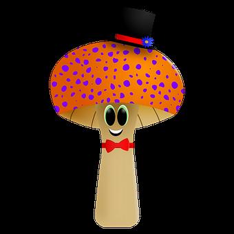 Mushroom, Fungi, Mushrooms, Nature, Toadstool