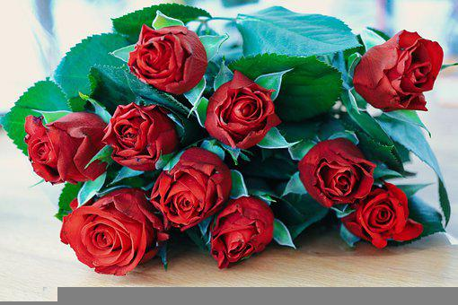 Roses, Rosenkavalier, Valentine's Day, Deco, Bouquet
