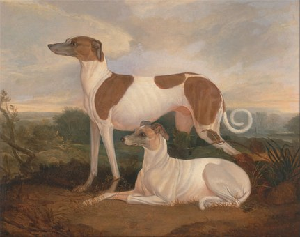 Charles Hancock, Painting, Art, Oil On Canvas, Dogs