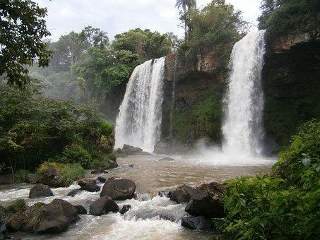 Argentina, Falls, Jungle, Forest, Rain Forest, Iguassu
