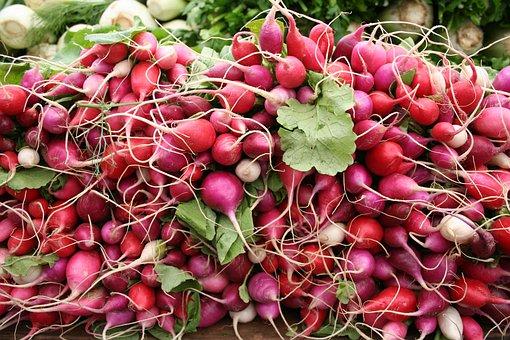 Radishes, Radish, Vegetables, Farmers Market, Farmer