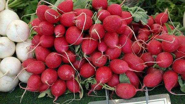 Radischen, Vegetables, Farmer's Market, Garden, Food