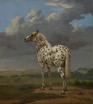 Paulus Potter, Art, Painting, Oil On Canvas, Horse