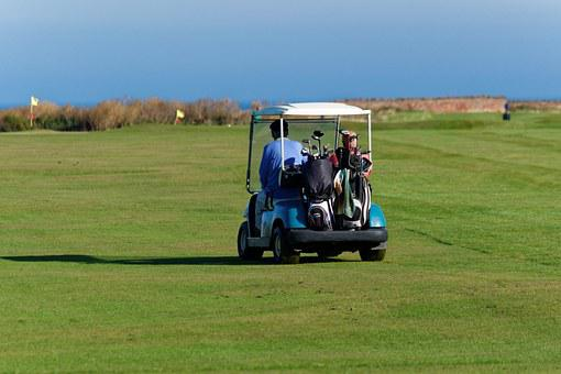 Golf Buggy, Golfers, Buggy, Men, Man, People, Golf