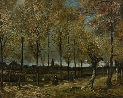 Vincent Van Gogh, Art, Artistic, Artistry, Painting