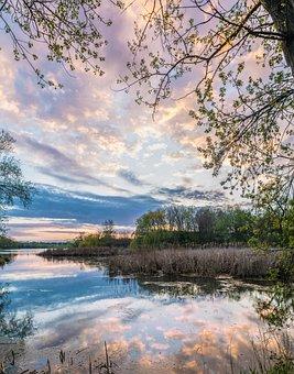 Minnesota, Lake, Trees, Water, Nature, Usa, Scenic