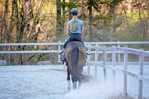 Horseback Riding, Horse, Girl, Pony, Animal, Equine
