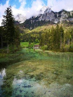 Lake, Mountains, Forrest, Alps, Hintersee, Idyllic