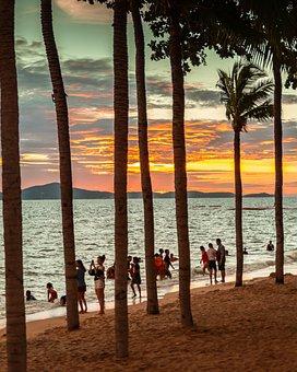 Thailand, Pattaya, Palm Trees, Sea, Seaside, Seashore