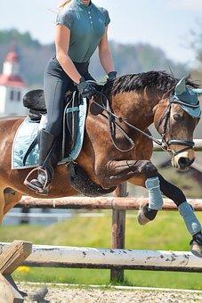Equestrian, Horse, Pony, Jump, Cavaletti, Reiter