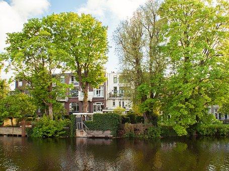 Houses, Trees, Holland, Schiedam, Netherlands