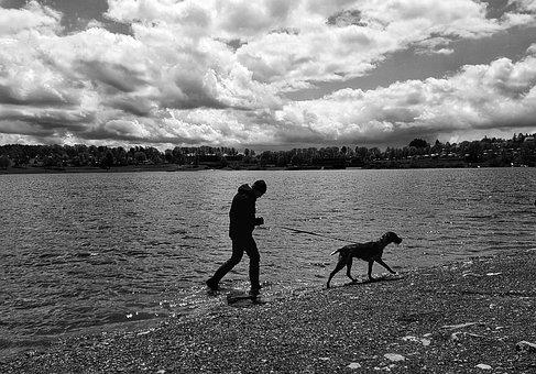 Walk, Dog, Man, Lake, Waters, Leisure, Pet, Owner