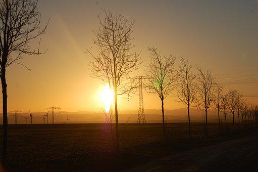 Trees, Sunset, Road, Field, Electrical Towers, Horizon