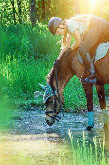 Horsewoman, Reiter, Horse, Pony, Water, Bach, Ride