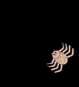 Spider, Arachnid, Cobweb, Animal, Web, Spiderweb