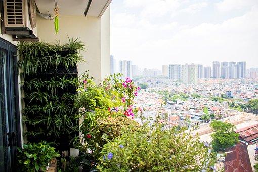 Balcony, Flower Garden, City, Condominium, Plants
