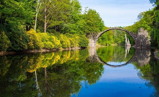 Park, Trees, Forest, Lake, Bridge, Reflection, Plants