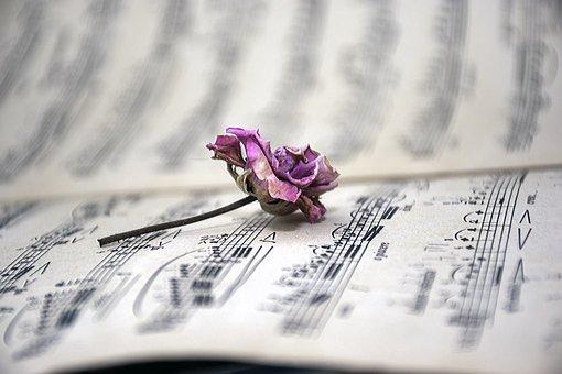 Sheet Music, Dry Rose, Vintage, Musical Notes, Music