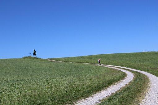 Grass, Fields, Path, Person, Walk, Walking, Away, Trail